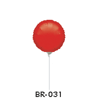BR-031